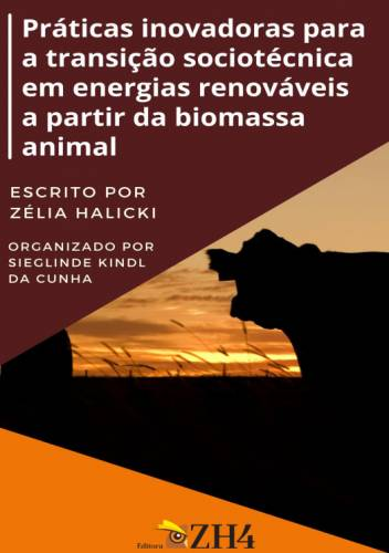 Práticas Inovadoras Para A Transição Sociotécnica Em Energias Renováveis A Partir Da Biomassa Animal